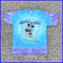 Vintage Splash Mountain Tie-Dyed T-shirt Walt Disney World Adult large